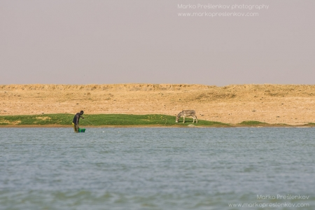 Knee deep in the Niger river