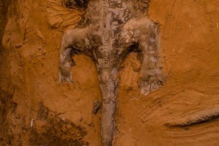 Crocodile on pre-Dogon wall
