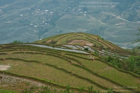 View down the paddy terraces