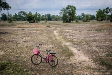 Pink bicycle in the field