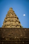 Birds and moon over Angkor Wat
