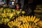 Wee Cambodian banana seller