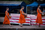 Young monks at alms procession