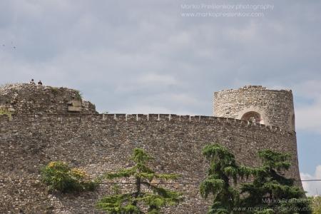 Kale walls